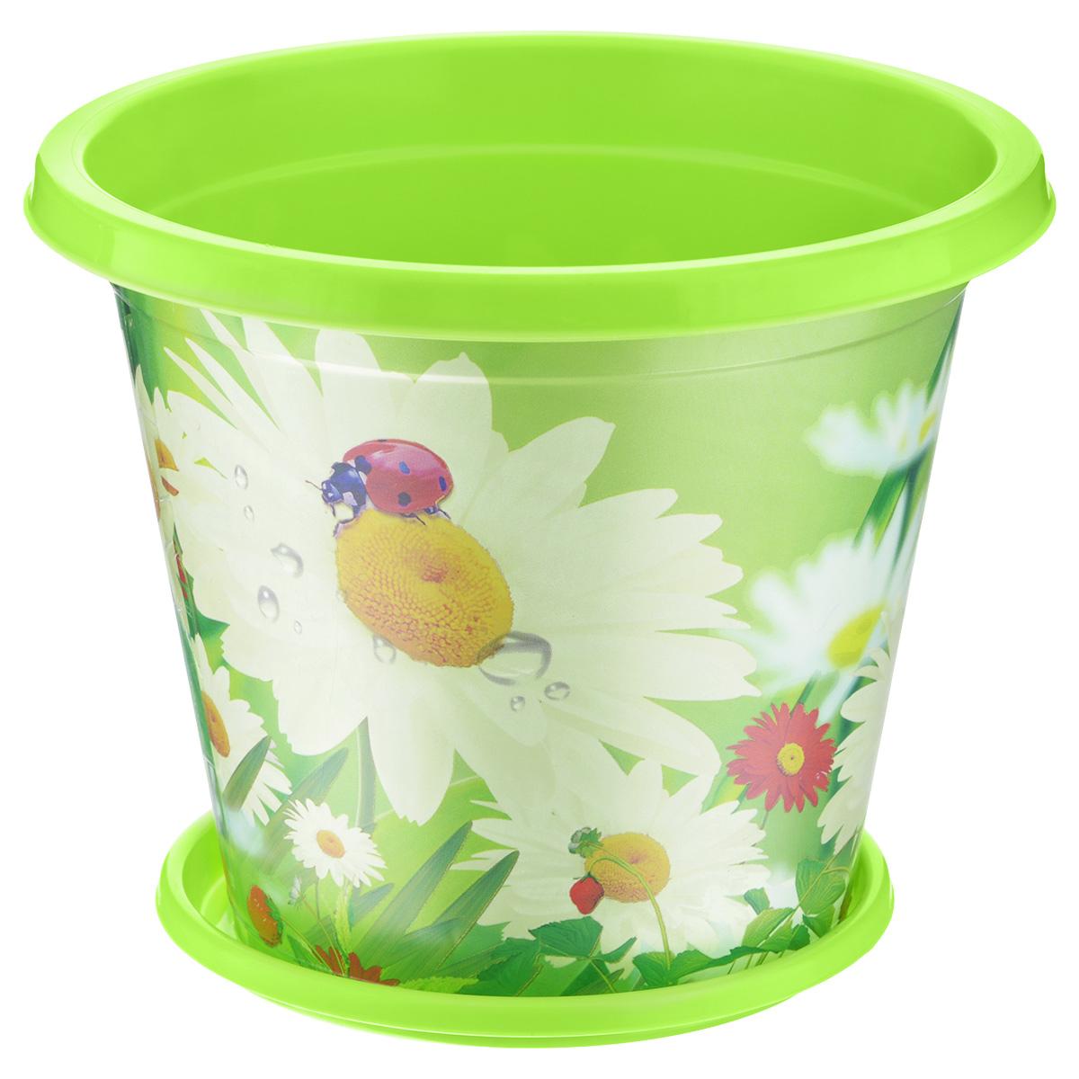 Горшок для цветов картинка для детей