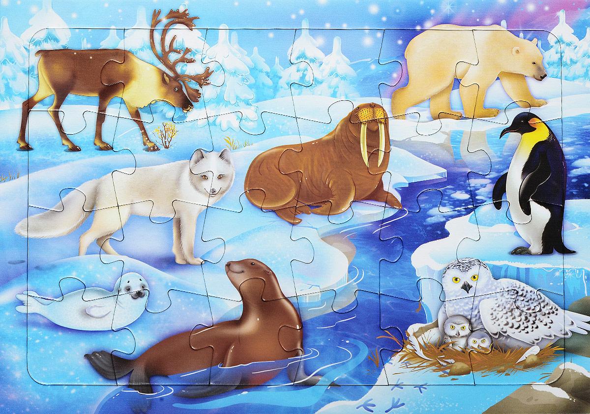 Животные севера для дошкольников картинки с описанием