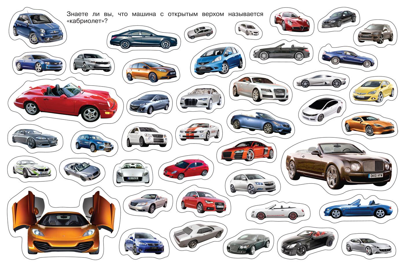 каталог авто с картинками только настоящее